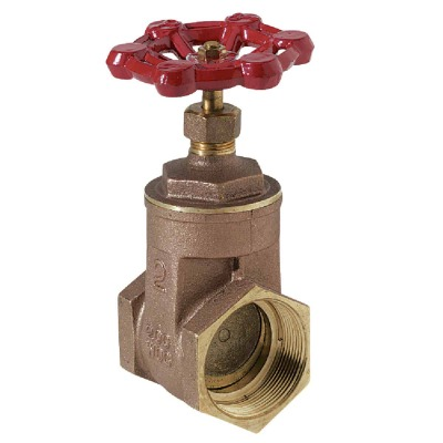 ProLine 2 In. FIPS x 2 In. FIPS Brass Cast Iron Gate Valve