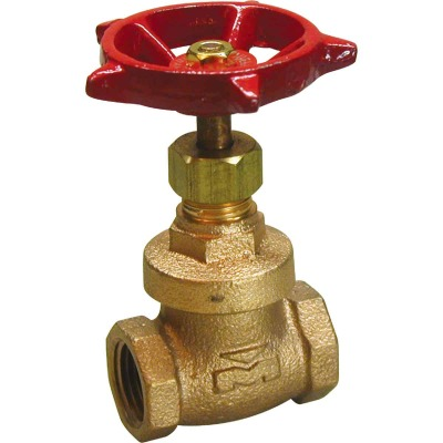ProLine 1 In. FIPS x 1 In. FIPS Forged Brass Gate Valve