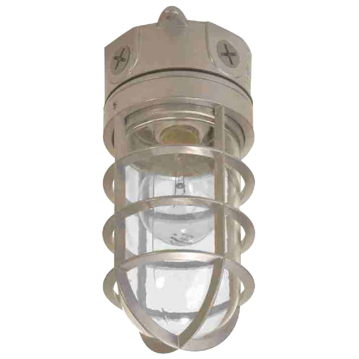 All-Pro A19 Incandescent Vapor Tight Haymow Barn Light Fixture Image 1