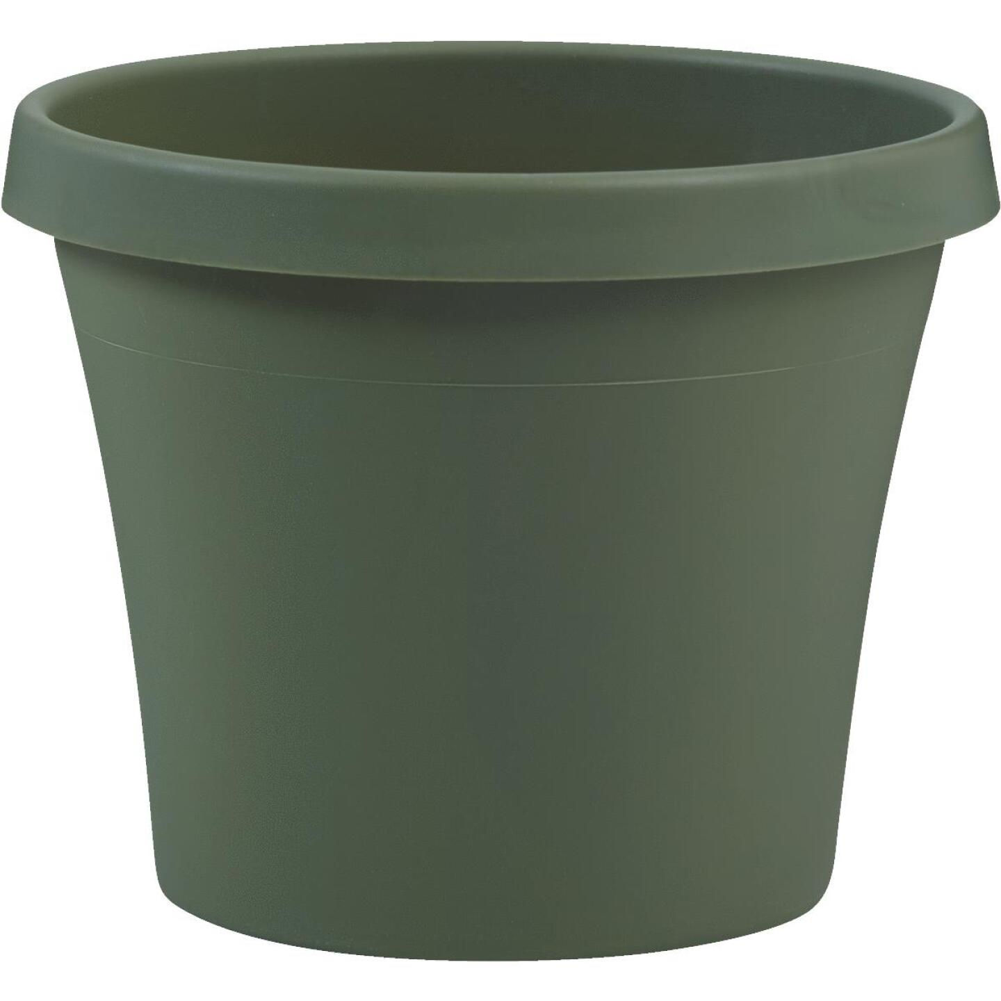Bloem Terra Living Green 7.25 In. H. x 8 In. Dia. Polypropylene Planter Image 1