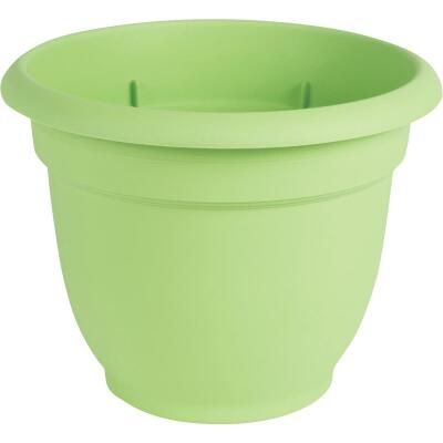 Bloem Ariana 13.75 In. H. x 16 In. Dia. Plastic Self Watering Honeydew Planter